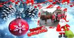 Passage du Père Noël